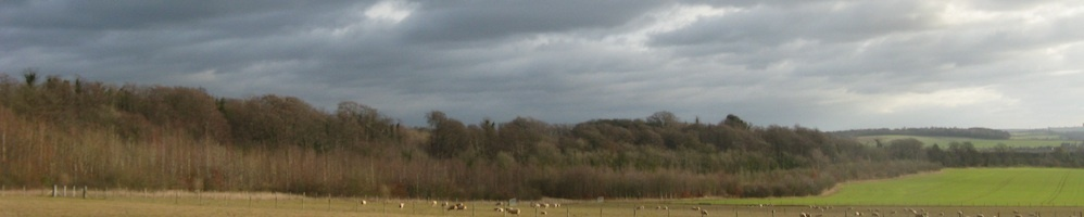 Magog Down with dark sky